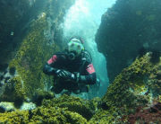 Scuba diving shop and school with PADI certification on Rio de Janeiro, Brazil. Try Dive and information about rental rates, packages, and courses.