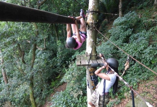 Canopy Tour Zipline Adventure - Rio de Janeiro