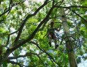 Explore Rio de Janeiro's forest canopy in a unique zip line canopy tour! Learn more about Rio Eco Adventures zip line tours! Click Here!
