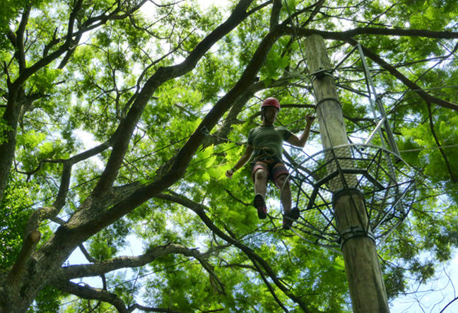 Explore Rio de Janeiro's forest canopy in a unique zip line canopy tour! Learn more about Rio Eco Adventures zip line tours! Click Here!